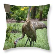 Garden Sandhills Throw Pillow