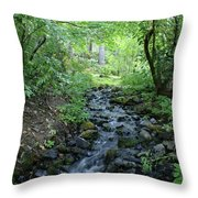 Garden Springs Creek In Spokane Throw Pillow