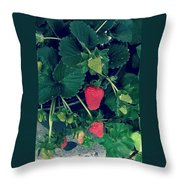 Ripening Garden Strawberries  Throw Pillow