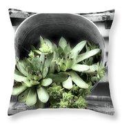 Garden Succulents Partial Color Throw Pillow