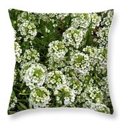 Garden Surprise 2 Throw Pillow
