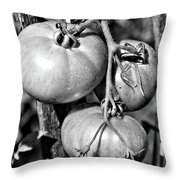 Garden Tomatoes In Black And White Throw Pillow