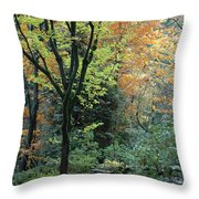 Garden Trees Throw Pillow