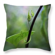 Garden Vine Throw Pillow