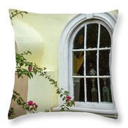 Garden Window Throw Pillow by Todd Blanchard