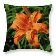 Garden With A Blooming Double Daylily Flowering Throw Pillow