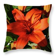 Garden With Lily Buds And A Blooming Orange Lily Throw Pillow