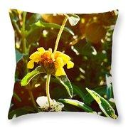 Garden Yellow Throw Pillow