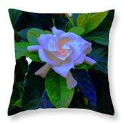 Gardenia Heart Warmth Throw Pillow