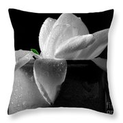Gardenia In Coffee Cup Throw Pillow