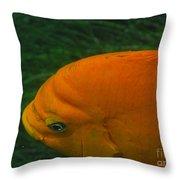 Garibaldi 3 Throw Pillow