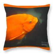 Garibaldi Throw Pillow