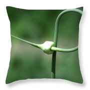 Garlic Abstract1 Throw Pillow