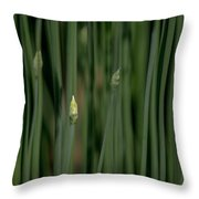 Garlic Chive Season Throw Pillow