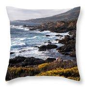 Garrapata Beach In Big Sur Throw Pillow