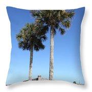 Garrita And Palms At The Fort Throw Pillow