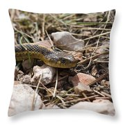 Garter Snake On The Trail In The Pike National Forest Of Colorad Throw Pillow