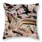 Garter Snake Throw Pillow
