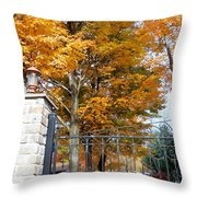 Gate And Driveway 1 Throw Pillow