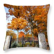 Gate And Driveway 3 Throw Pillow