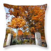 Gate And Driveway Throw Pillow