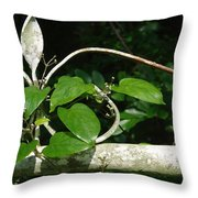 Gate And Vine Throw Pillow