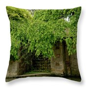 Gate To Cam Waters. Throw Pillow