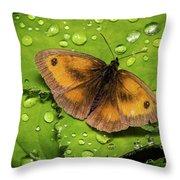 Gatekeeper Butterfly After The Rain. Throw Pillow