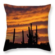 Gates Pass Sunset Throw Pillow