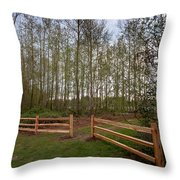 Gates To The Birch Wood Throw Pillow