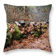 Gather No Moss Throw Pillow