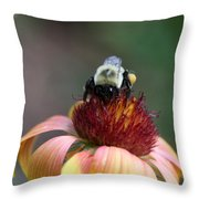 Gatherer Throw Pillow