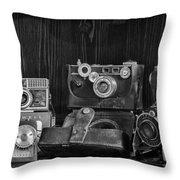 Gathering Dust I Throw Pillow by Heather Applegate