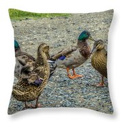 Gathering Of The Flock Throw Pillow