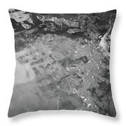 Gator At Home Throw Pillow