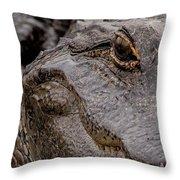 Gator Eye Throw Pillow