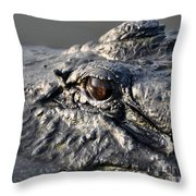 Gator Gaze Throw Pillow