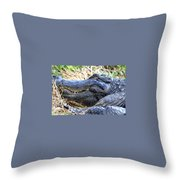 Gator Head Throw Pillow