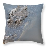 Gator IIi Throw Pillow