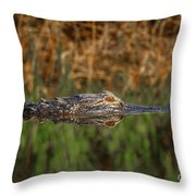 Gator In Canal Throw Pillow