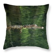 Gator In The Spring Throw Pillow
