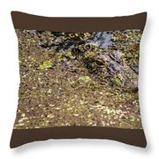 Gator In The Weeds Throw Pillow