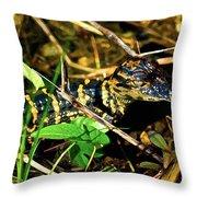 Gator Paint Throw Pillow