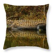 Gator Relection Throw Pillow