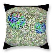 Gauzean Orbits 1 Throw Pillow