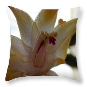 Gauzy Throw Pillow