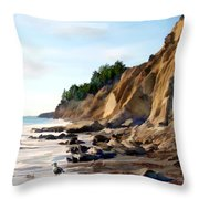 Gaviota Throw Pillow