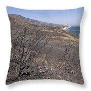 Gaviota State Park Looking East Throw Pillow