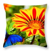 Gazania And Blue Butterfly Throw Pillow