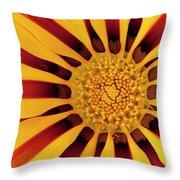 Gazania Throw Pillow